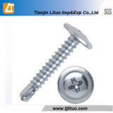 Oblea Galvanzied de buena calidad auto cabeza de perforación tornillos C1022A