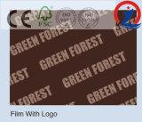 La película hizo frente a Sr. del pegamento de la madera contrachapada 9mm-21m m 1220*2440m m