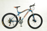 City aluguer/City Bike (SR-MR4)