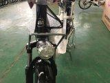 合金のアルミニウム長距離リチウム電池の電気自転車