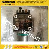 Unité de la pompe à injection de carburant (pompe) 4110001009024 Shandong Lingong