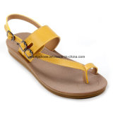 발가락 Strap를 가진 다채로운 Women Summer Shoes Beach Sandal