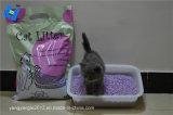 Tofu-Katze-Sänfte mit Lavendel-Geruch und einfachem Büschel