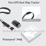 Heißer verkaufenhaustier GPS-Verfolger mit Muffe (EV-200)