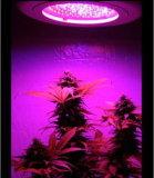 2017 la nuova fabbricazione LED ricaricabile coltiva l'indicatore luminoso
