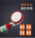 ABS van het Houvast van de Toebehoren van de badkamers de Plastic Hoofden van de Douche van het Chroom
