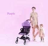 Einfacher faltender Baby-vierradangetriebenSpaziergänger