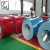 Rolled Galvanized/Colored Coated Galvanized Steel Coil