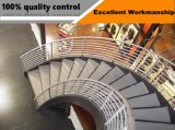 Самомоднейшая просто прямая конструкция лестниц, деревянная лестница с стеклянным Railing