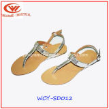 L'été Slipper mode féminine des sandales de PU Upper