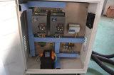 CNC van de Houtbewerking van de Machine van twee Hoofden 3D Snijdende Router