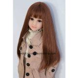 65cmの小型性の人形ペット愛人形の実質の猫の小さい胸