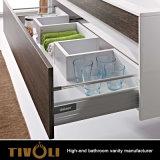 Governi del dispersore della stanza da bagno con il disegno di lusso Tivo-0022vh