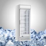 Il vetro ha fronteggiato il congelatore per il gelato