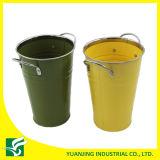 Цветочный горшок цветастой вазы металла садовничая с оправой крома