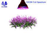 Las bombillas de 12W PAR38 para cultivar plantas de las luces