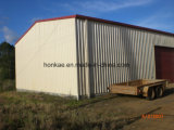 Taller de la estructura de /Steel del almacén de la estructura de acero del diseño de la construcción
