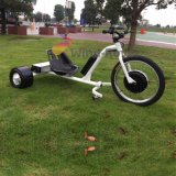 Wind Rover 3 Wheels Electric Drift Trike Motocicleta Elétrica para Venda