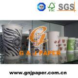 Tazze di carta personalizzate di buona qualità per lo spostamento della bevanda e dell'alimento