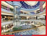 Panoramische Lift met het Plafond van het Roestvrij staal van de Spiegel met 1 Ventilator, LEIDENE Zachte Lichten, 4 Reeks