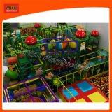 Спортивная площадка занятности детей Playgeound парка атракционов Mich крытая