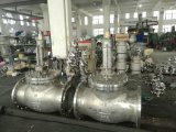 Pn10/Pn16/Pn25 Dn100 304 Flansch-Aufzug-Rückschlagventil