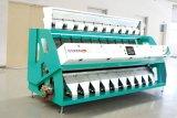 Máquina funcional vendedora caliente del compaginador del color del arroz/del eyector de la matriz de Italia