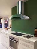De melamine Onder ogen gezien Keukenkasten van de Spaanplaat