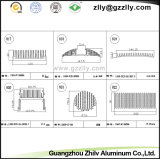 De internationale Hete Koelere Radiator Heatsink van de Profielen van het Aluminium van de Verkoop