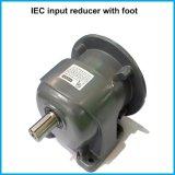 IEC con brida montada en serie G3 helicoidal eléctrico Motores con cajas reductoras Lm