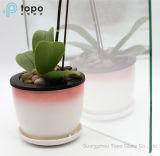 Het hoge Transparante Slimme Glas van de Spiegel van het Glas Magische met Goede Kwaliteit (s-F7)