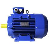 Y2 Series Efficacité standard AC Triphasé Moteur électrique Moteur industriel