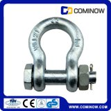 G2130 Type de boulon Ancre Shackle Hot DIP galvanisé