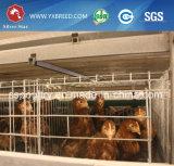 層および肉焼き器のための自動初生鶏のケージ