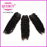 Les cheveux humains de la pente 100% d'Aaaaaaaa empaquettent le cheveu péruvien de Vierge d'onde d'eau (curly-038)