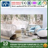 Patio moderno mobiliario de jardín exterior impermeable Sofá Junco (TG-1221)