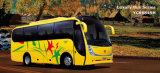 Ni ATV (ATV-008) de l'autobus de MiLuxury (YCK6849H)