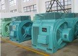 Гидро генератор постоянного магнита турбины/альтернатор
