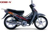 Moto GB110-V