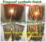 La chaume synthétique de paille africaine et voudrait rendre technique et ignifuge pour la ressource 25 de toit