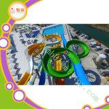 De openlucht Apparatuur van het Park van Manufactureraqua van de Dia van Equipmentwater van het Park van het Water