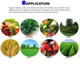 Het Poeder van het Aminozuur van de Samenstelling van de Polypeptiden van de sojaboon