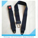 Muestra del cinturón de seguridad de la seguridad de 2 puntas