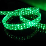편평한 5개의 철사 경제적인 싼 가격 LED 네온 유연한 밧줄 빛