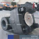 A105/F304/F316 passe as extremidades da válvula de retenção de aço forjado