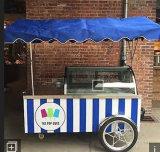 África Ocidental Gelado móvel carrinhos Popsicle/Gelato Freezer Carrinho (marcação aprovar)