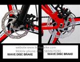 Bici ancha de la nieve de los neumáticos de la bici gorda barata caliente de la venta