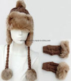 Шлем шерсти Earmuffs & комплекты перчаток на зима