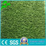 정원 훈장을%s PE 직업적인 자연적인 정원사 노릇을 하는 잔디