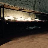 Luz superior do borne ao ar livre do diodo emissor de luz 3 anos de garantia